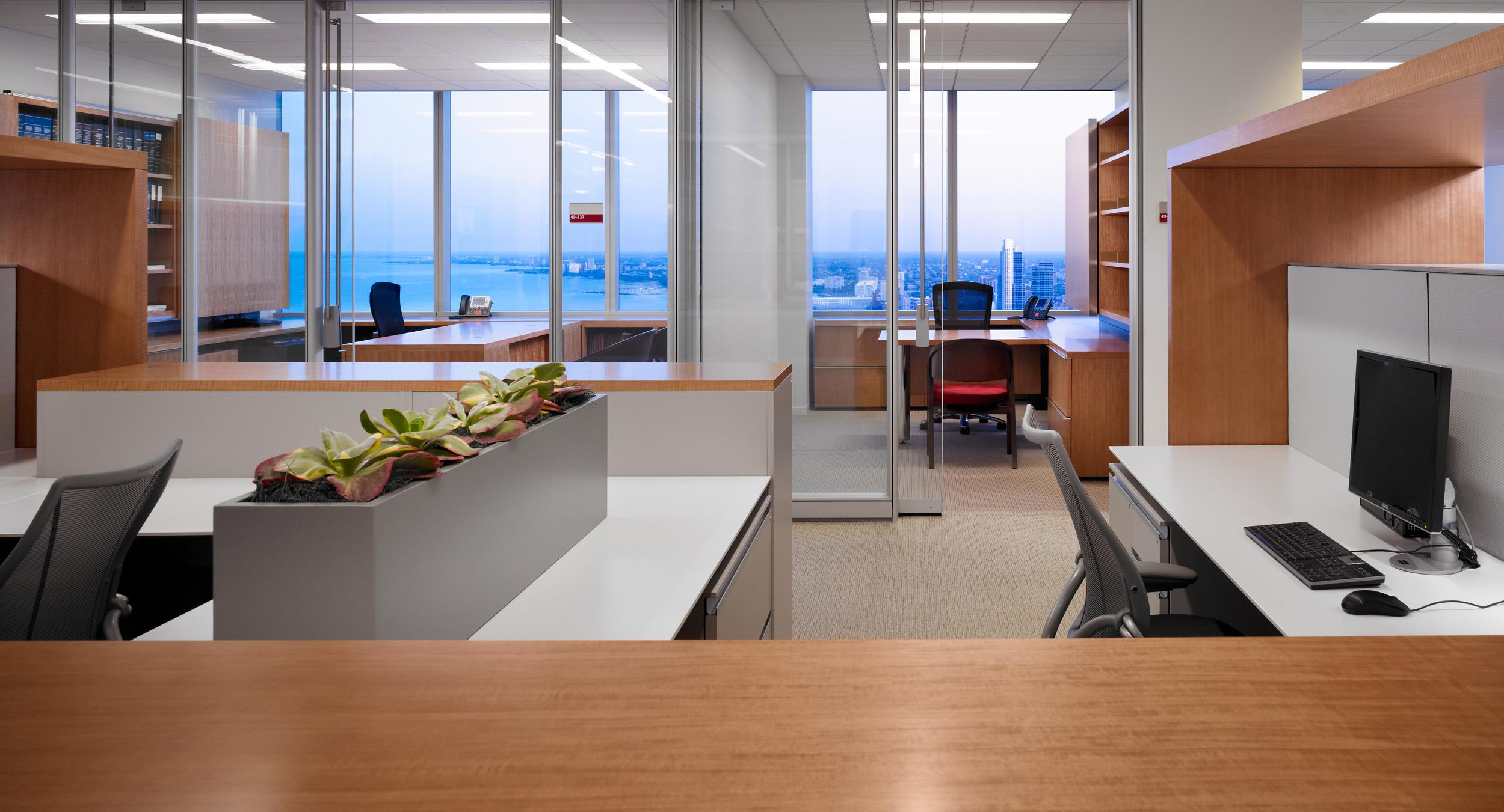 HALCON provided Anigre surfaces and surrounds for the open plan to complement private offices.